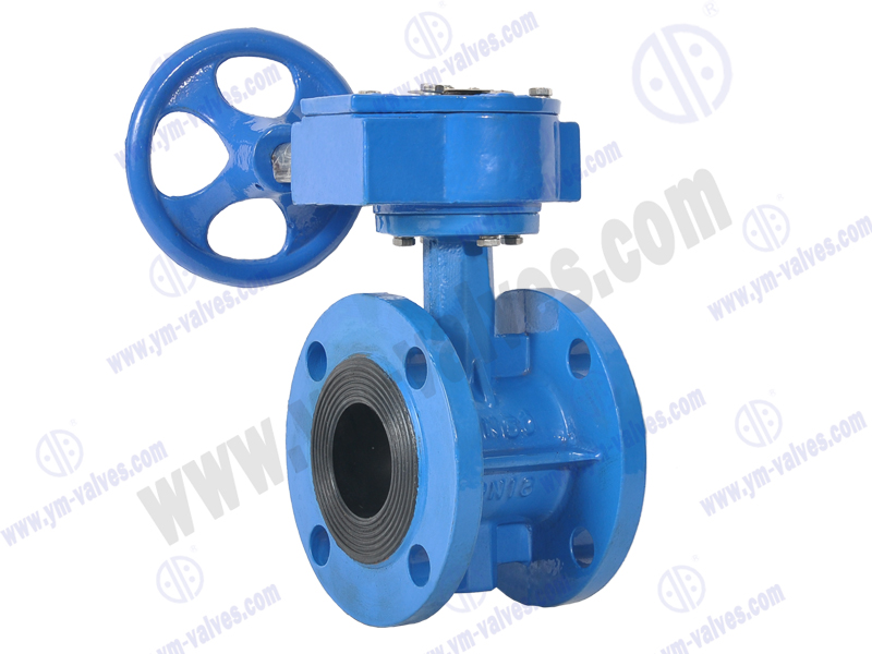 Worm Gear Operated Flange Center Line Butterfly Valveworm Gear