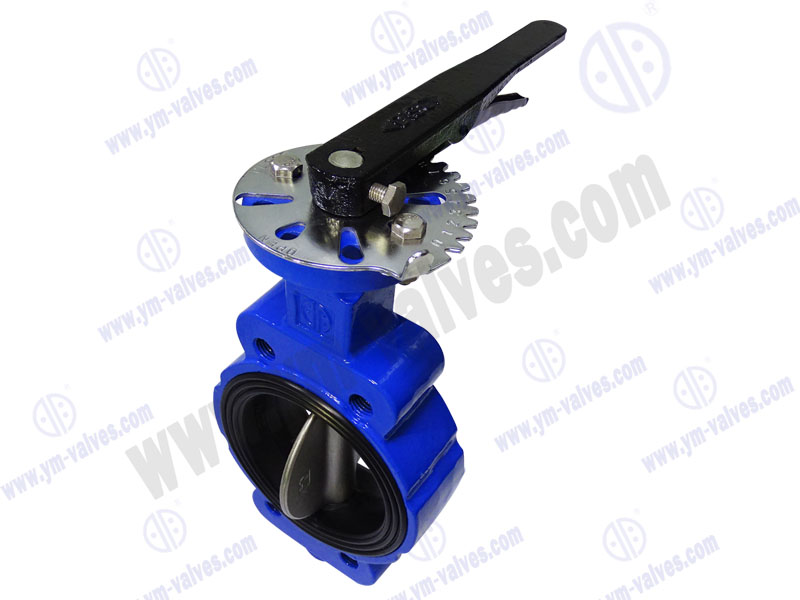 3 Inch Lug Cast Ironductile Iron Soft Seal Center Line Butterfly Valves
